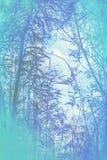 Künstlerischer, natürlicher Hintergrund mit Anlagen Stockbilder