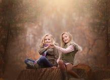 Künstlerisches Porträt im Freien von zwei blonden Mädchen, die auf einem Klotz des Baums in Holz sitzen Lizenzfreie Stockfotos