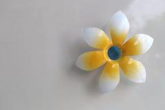 Künstliche Blumen auf Wand im Hauptdekor Stockbilder
