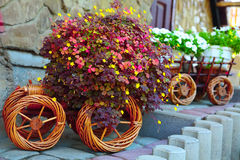 Künstliche Blumen in einem Warenkorb Lizenzfreies Stockbild