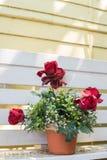 Künstliche Blumen im Korb im Weinlesethema Stockfotos