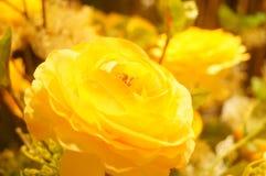 Künstliche Blumen, sehr lebensecht lizenzfreie stockfotos