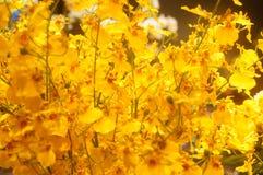 Künstliche Blumen, sehr lebensecht lizenzfreies stockfoto