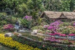 Künstliche chinesische landschaftlich gestaltete Gärten - ein Gedicht von Blumen, Steine Stockbild
