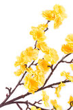Künstliche gelbe Blumen Lizenzfreie Stockbilder