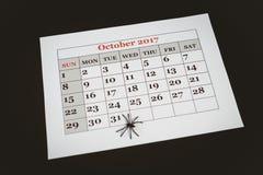 Künstliche Spinne auf Kalender über schwarzem Hintergrund Stockfotos
