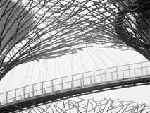 Künstliche Spinnen-Netze Stockfoto