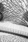 Künstliche Spinnen-Netze Stockfotografie