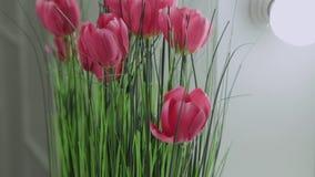 Künstliche Tulpen im hintergrundbeleuchteten Spiegel stock video