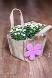 Künstliche weiße Blumen mit rosa Gutschein verpackten in der Segeltuchtasche Stockfotos