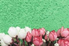 Künstliche weiße und rosa Rosen auf einem Frühling-grünen Hintergrund an der Unterseite des Rahmens Stockfoto