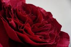 Künstlicher Burgunder-Blumenabschluß oben auf weißem Hintergrund Burgunder-Blumenbeschaffenheit Lizenzfreie Stockbilder