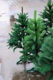 Künstlicher grüner Weihnachtsbaum auf dem nassen Asphalt nahaufnahme Lizenzfreie Stockfotos