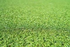 Künstlicher Gras-Hintergrund lizenzfreies stockbild