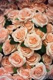 Künstlicher rosafarbener Blumenhintergrund stockfotografie