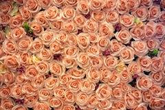 Künstlicher rosafarbener Blumenhintergrund lizenzfreies stockfoto