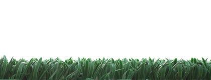 Künstliches Gras lizenzfreies stockfoto
