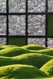 Künstliches Gras Lizenzfreies Stockbild