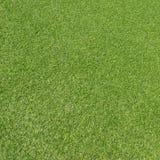 Künstliches Gras lizenzfreie stockbilder
