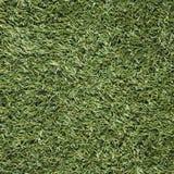 Künstliches Gras Stockbild