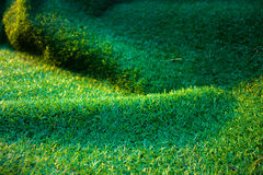 Künstliches Gras Lizenzfreie Stockfotografie