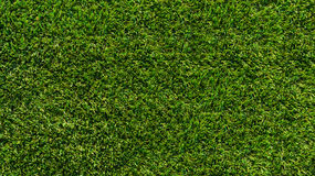 Künstliches Gras Feld lizenzfreies stockfoto