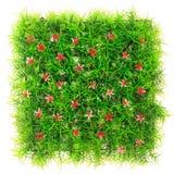 Künstliches Gras lokalisiert auf weißem Hintergrund stockfotos