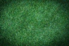 Künstliches Grassportfeld Stockfotos