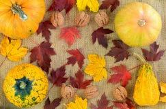 Kürbis auf dem Hintergrund der Leinwand und des gefallenen Herbstlaubs Rot und Orange färbt Efeublattnahaufnahme Lizenzfreies Stockfoto