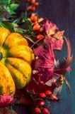 Kürbis auf Herbstlaub und Hagebutten, Abschluss oben lizenzfreies stockfoto
