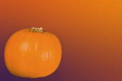 Kürbis auf Orange Lizenzfreies Stockfoto