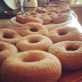 Kürbis-Donuts Lizenzfreies Stockfoto