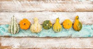Kürbis-hölzerner Hintergrund Autumn Halloween Thanksgiving Lizenzfreies Stockbild