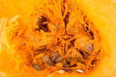 Kürbis halb orange mit Samen stockbilder
