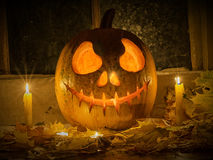 Kürbis Halloween Stockfotos