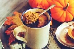 Kürbis Latte-Becherkuchen gemacht in der Mikrowelle lizenzfreie stockfotos