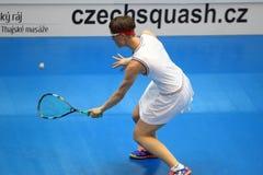 Kürbis - Lucie Fialova Lizenzfreies Stockfoto