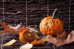 Kürbis mit Herbstblättern Lizenzfreie Stockfotografie