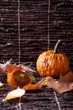 Kürbis mit Herbstblättern Lizenzfreies Stockbild