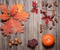 Kürbis, Nüsse, Eicheln und Herbstlaub auf einem alten Holztisch stockfotos