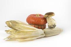 Kürbis, Pilz, Mais auf weißem Hintergrund stockfotografie