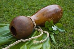 Kürbis-Trommel Ipu Heke Hawaiianer-zwei Lizenzfreie Stockfotografie