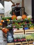 Kürbis und Blumen für Verkauf stockfoto
