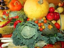 Kürbis und ein anderes Gemüse Lizenzfreie Stockbilder