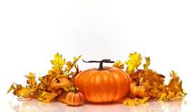 Kürbis- und Herbstblätter auf einem weißen Hintergrund stockbild