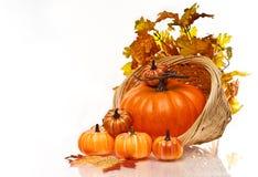 Kürbis- und Herbstblätter in einem Weidenkorb. Stockfotos