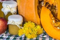 Kürbis und Kürbis stauen, pürieren oder sauce auf Grün mit weißer Tischdecke Des Herbstes Leben noch Stockfoto