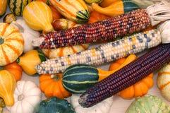 Kürbis und Mais Lizenzfreies Stockfoto