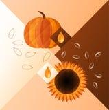 Kürbis und Sonnenblume Lizenzfreie Stockfotografie