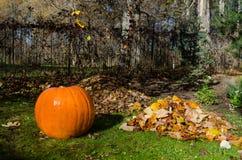 Kürbis und Stapel getrocknete Blätter Herbstliches Konzept lizenzfreie stockbilder